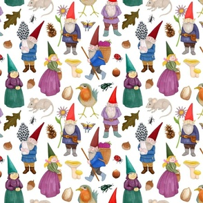 Forest Gnomes Small Print