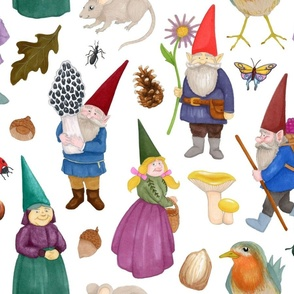 Forest Gnomes & Friends
