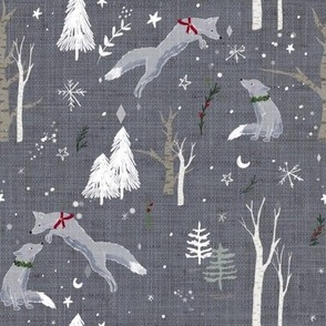 Light Blue Foxes in Snow