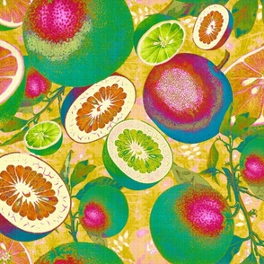 Citrus Fruit Abstract