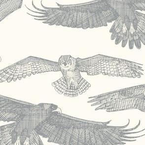 birds of prey silver