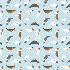 Tiny assorted Collies - winter snowflakes