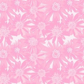 anenomes in just pink