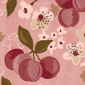 stone fruit plum tree plum blossom medium scale