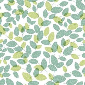 Leaves. Green