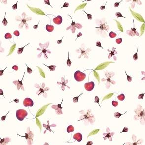 cherry blossoms and cherries2
