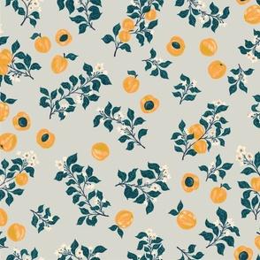 Apricot Grove