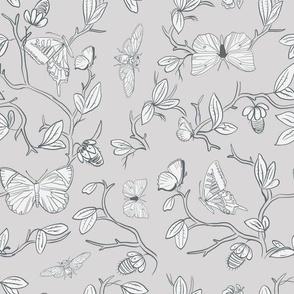butterfly pavilion in Grey