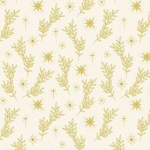Stars and Plants
