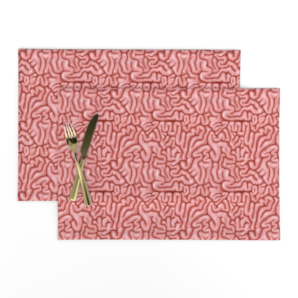 Lamona Cloth Placemats featuring Natural Pink Brains  by sufficiency