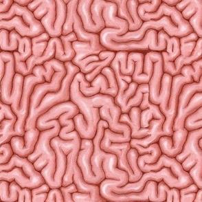 Natural Pink Brains
