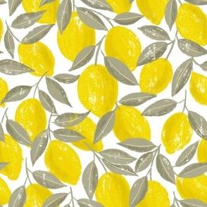 Lemons-small