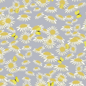 asters and butterflies yellow_ white on grey