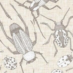 beetles natural