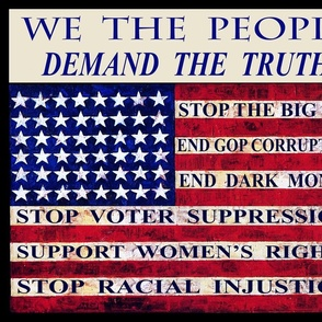 STOP THE BIG LIE!  Demand the TRUTH in GOVT - End Voter Supression!