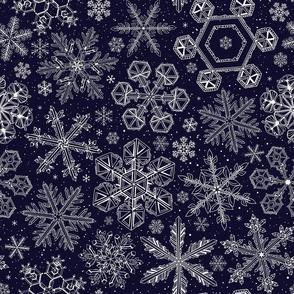 White Snowflakes on dark blue