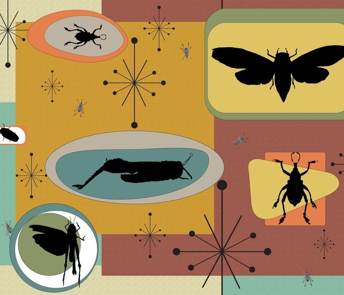 Mid Century Modern Retro Bugs