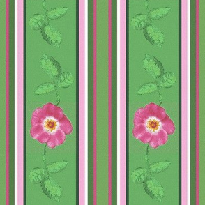 rose_and_leaves_stripes_3_12c Picnik_collage-ch-ch-ch-ch-ch