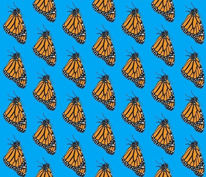 Monarch cutout