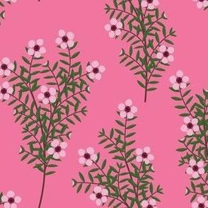 Manuka Flower Pink