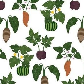 Matariki Garden Vegetables