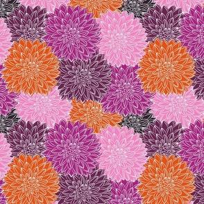 Dahlia Bloom Boom - Summer Brights