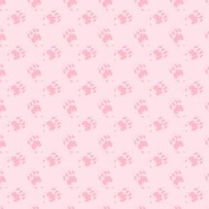 Cat_Trax_-_Rose