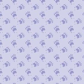 Cat_Trax_-_Misty