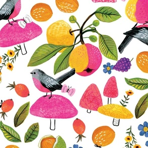 large-scale   birds and forest fruit