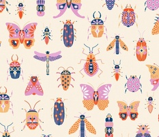 Colourful Insects on Parade