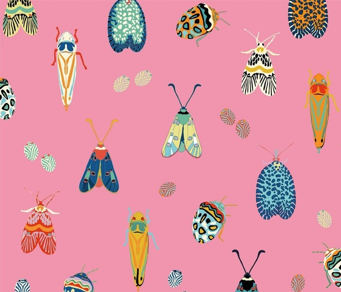bug-selection_pink