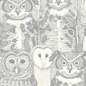 owls NC silver