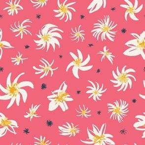 Star Blossom in Strawberry