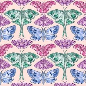 muted moths