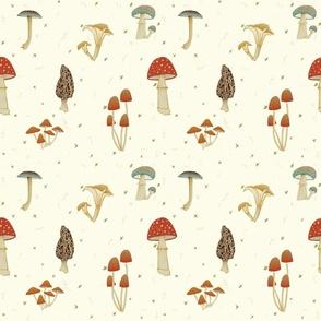 Magic Mushrooms Cream