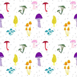 Magic Mushrooms Rainbow
