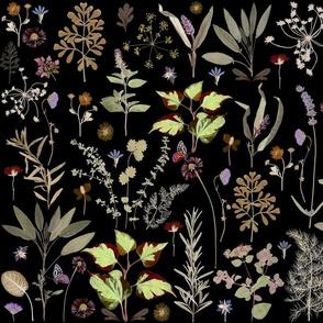 herb garden invert sf