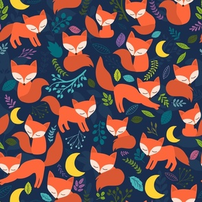 Red Fox In The Night