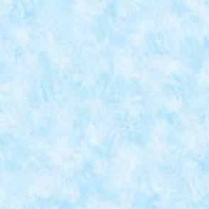 Light Blue Fern Maple Sunprint Texture