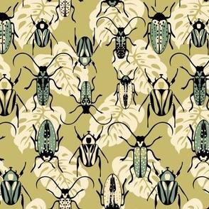 Beetles - Moss - Medium