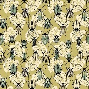 Beetles - Moss - Small