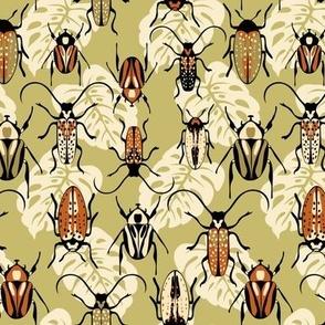 Beetles - Rust - Medium