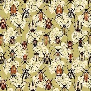Beetles - Rust - Small