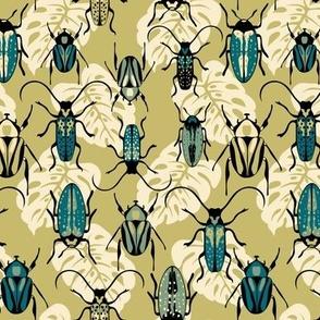 Beetles - Teal - Medium