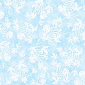 Light Blue and White Fern Maple Sunprint Texture