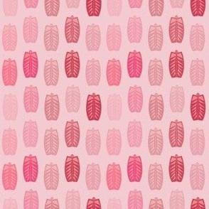 Pretty in Pinks Modern Shield Bugs