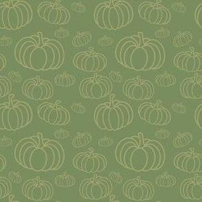 Festive Fall Pumpkin Haul