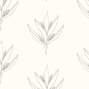 Large // Heliconia Psittacorum Flower Outline - Eggshell