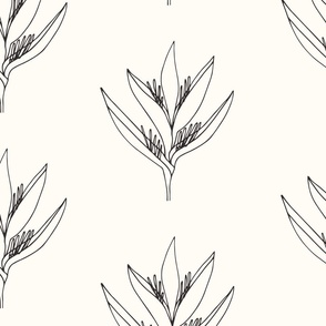 Large // Heliconia Psittacorum Flower Outline - Black and White