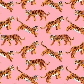 Bengal Tigers - Peachy Pink - Small Scale